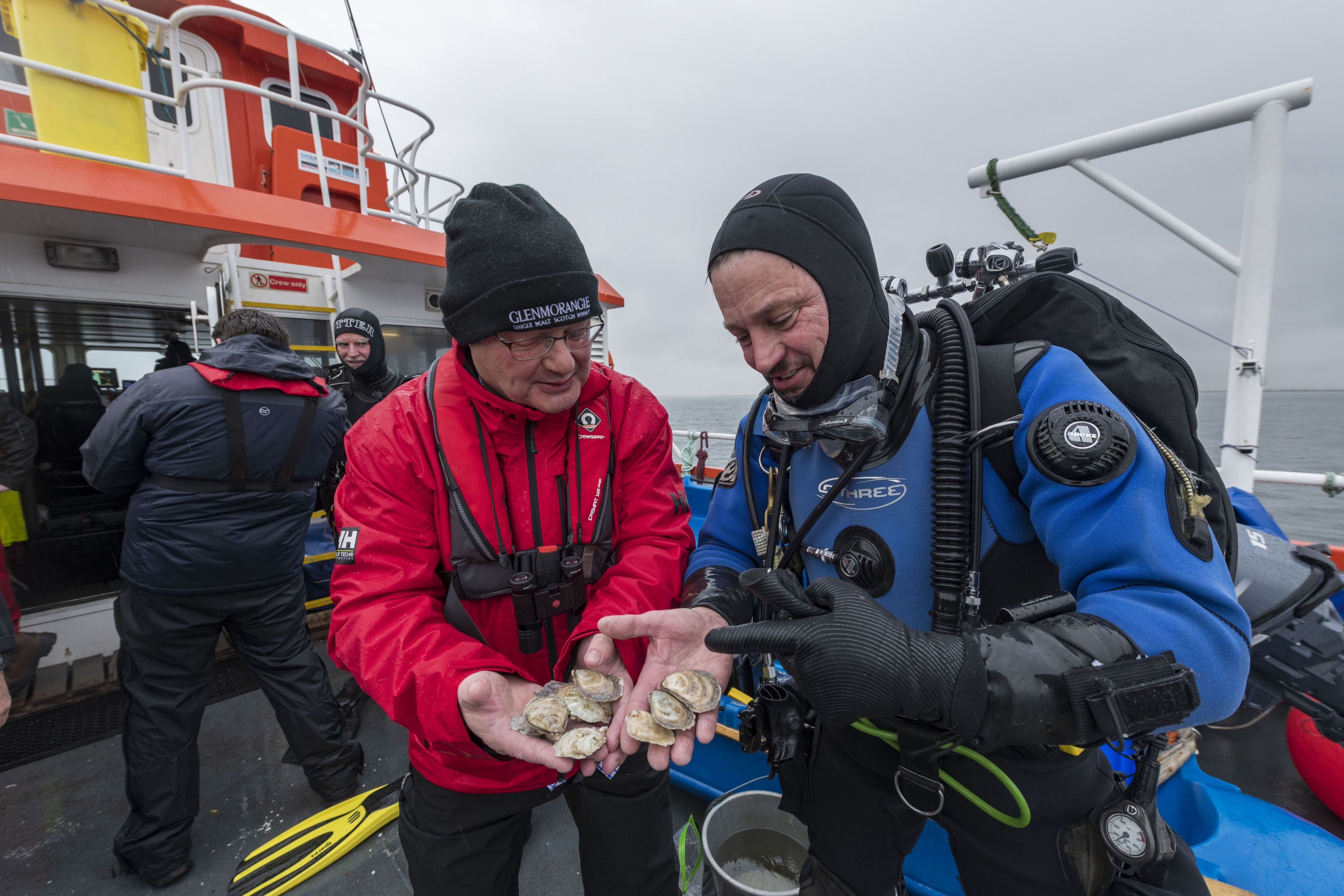 Glenmorangie's Hamish Torrie and Dr Bill Sanderson of Heriot-Watt inspect the Native European Oysters before they take up residence in the Dornoch Firth