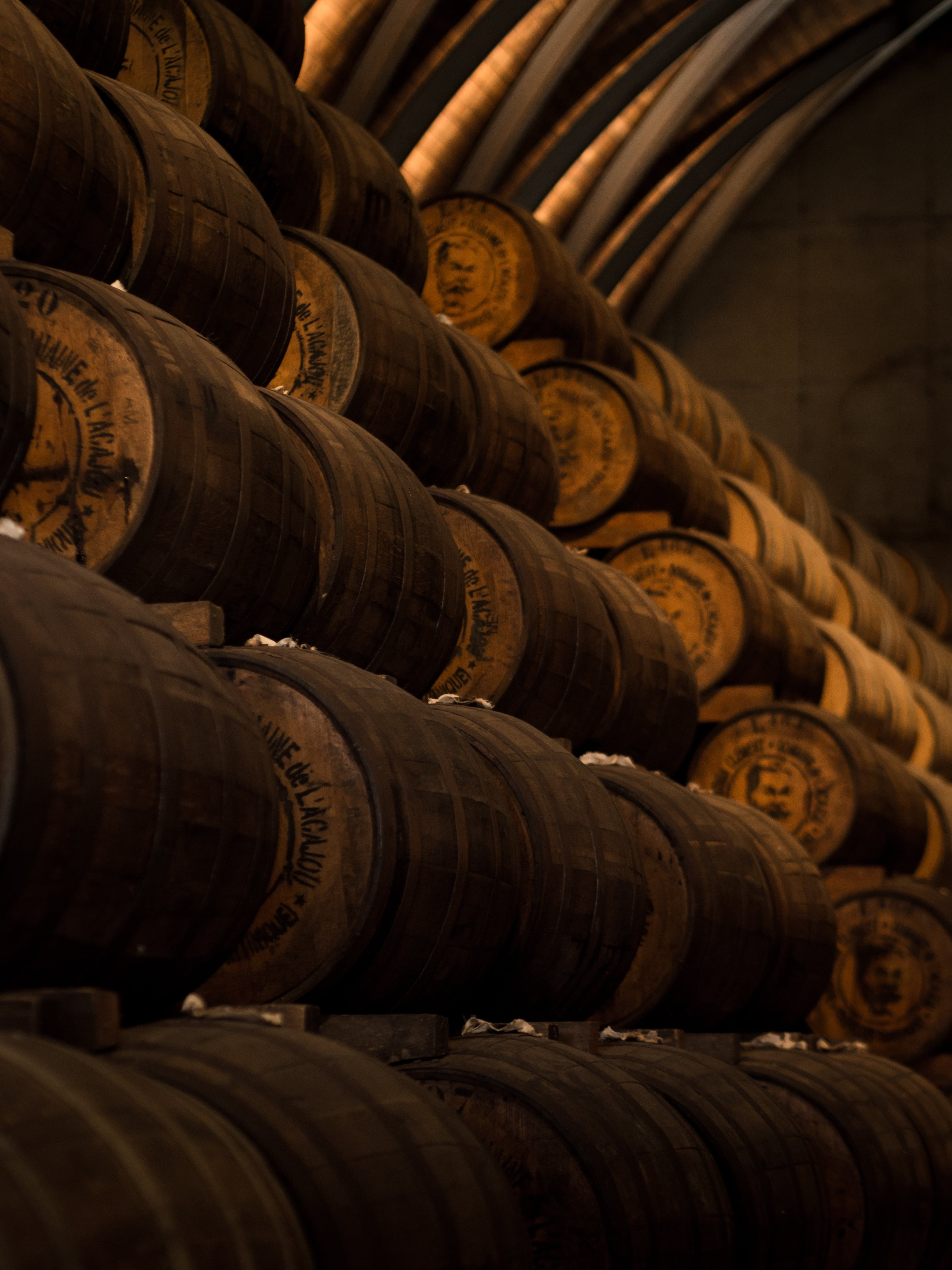 Whisky Casks Maturing